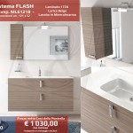 FLASH_ML61218