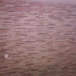 piastrelle-bagno-02